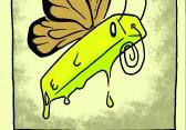 PP_Butterfly